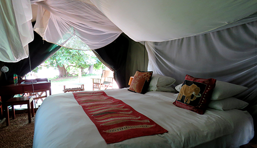 LUXURY SAFARI PACKAGES(Accommodation ,2 Activities , Breakfast, Lunch, Dinner )<br>